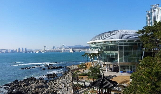 Busan City Tour  Private Van Tour One Day  Trazy Korea39s 1 Travel Guide
