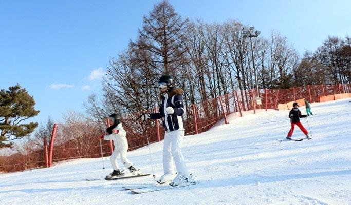 Strawberry Picking + Yangpyeong Rail Bike + Vivaldi Park Ski Resort 1 Day Tour