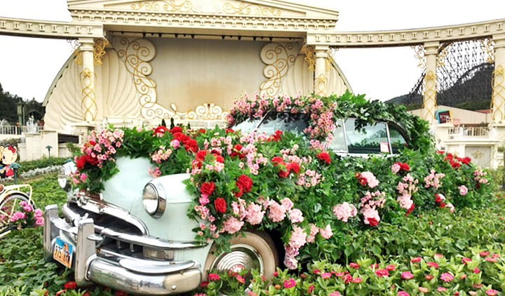 Everland Discount Ticket & Private Van Transfer Package