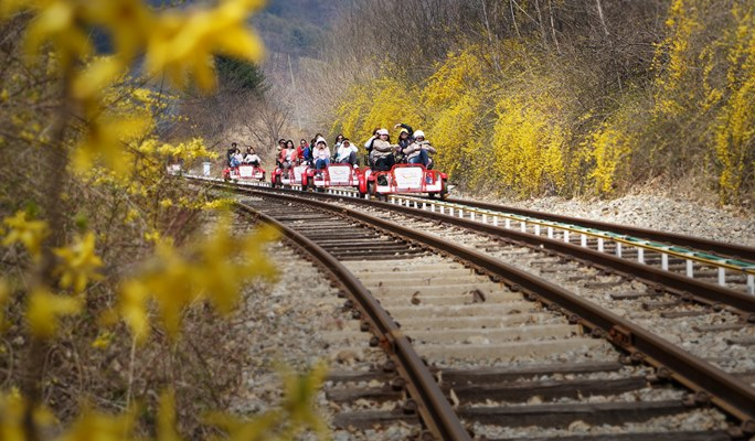Gapyeong Rail Park - Rail Bike Ticket