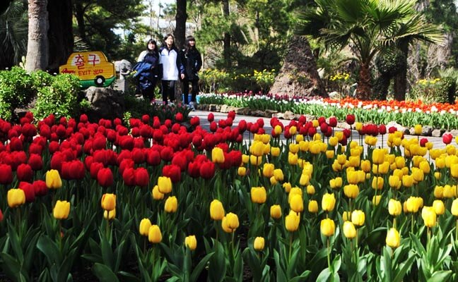 Hallim Park Jeju Discount Ticket