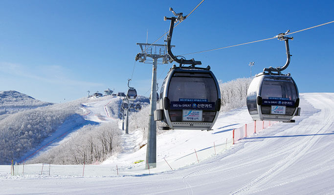 High1 Ski Resort Transfer (from/to Seoul & Incheon/Gimpo Airport) 24/7