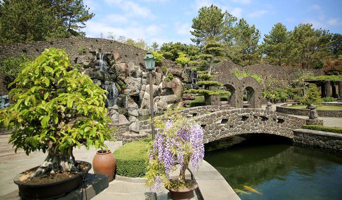 "Картинки по запросу ""spirited garden jeju island"""