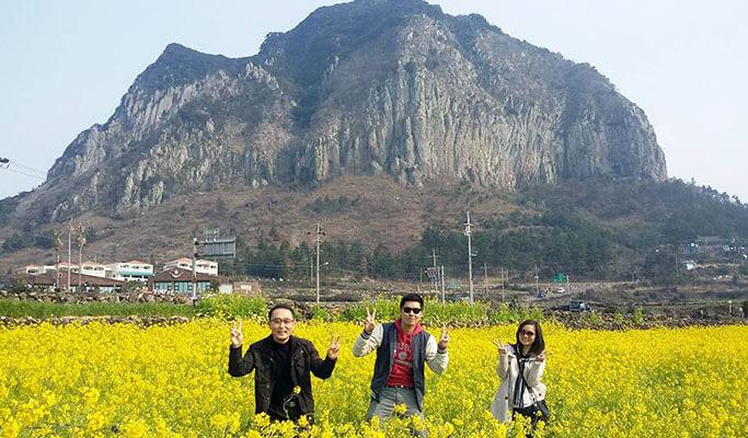 Jeju Taxi Tour