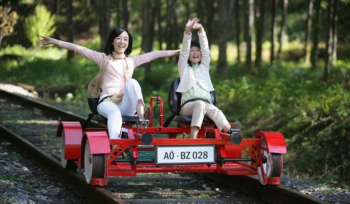 Jeongseon Rail Bike Ticket
