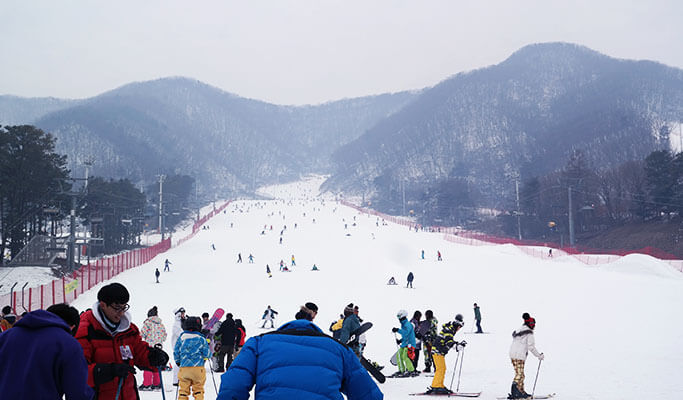 1 Day Ski/Snowboard/Snow Sled/Free Time Tour: Jisan Ski Resort