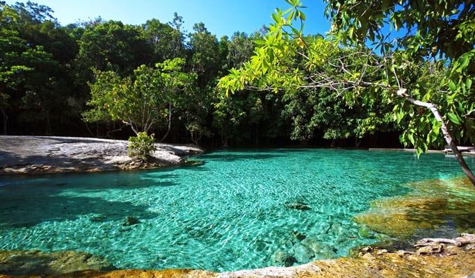 Krabi Rainforest 1 Day Tour (Full Day)