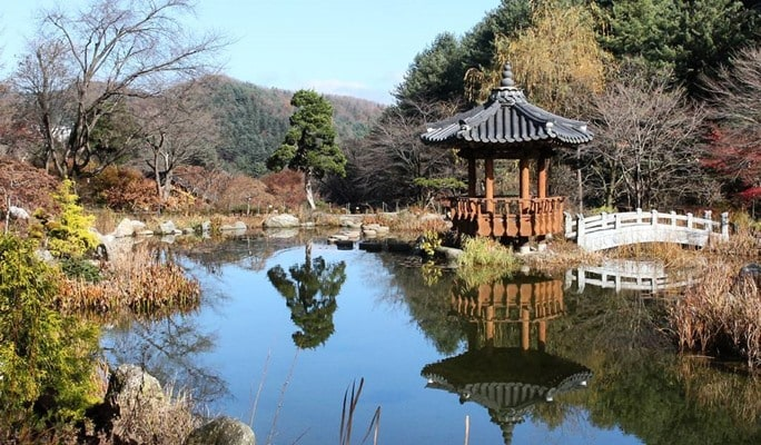 Seoul Vicinity: Nami Island + Gangchon Rail Bike + Garden of Morning Calm Day Tour