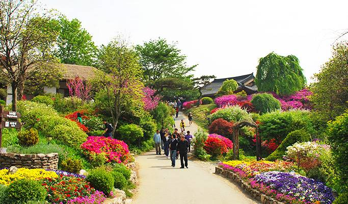 Seoul Vicinity: Gapyeong One Day Private Van Tour