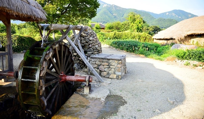 Boseong Green Tea Plantation & Naganeupseong Folk Village 1 Day Private Tour