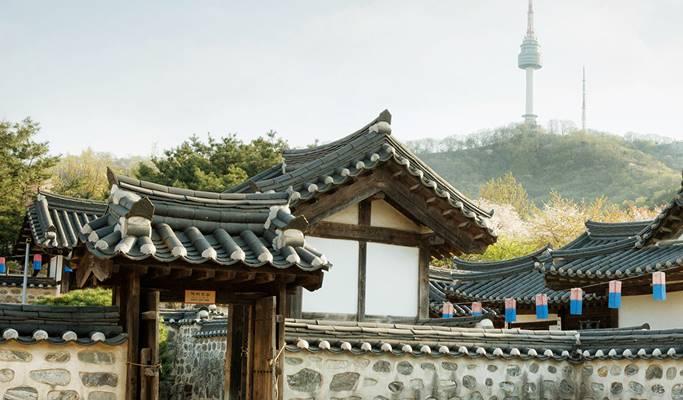 Seoul by Foot: Namsan Park & N Seoul Tower Evening Hiking Tour