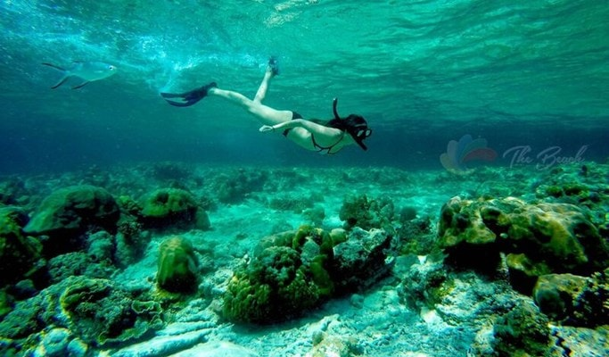 Phi Phi Islands Sunrise Tour by Speedboat (+Lunch/Snorkeling) - from Phuket