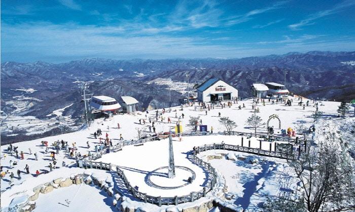 PyeongChang 2018: Phoenix Park Ski Resort Transfer (from/to Seoul & Incheon/Gimpo Airport) 24/7