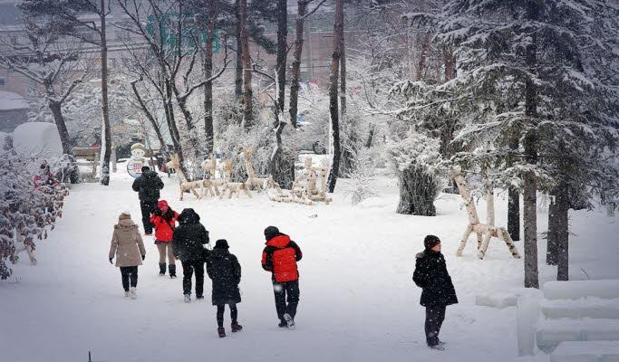Half Day Mt. Seoraksan/Ice Fishing Tour (from Alpensia Ski Resort)