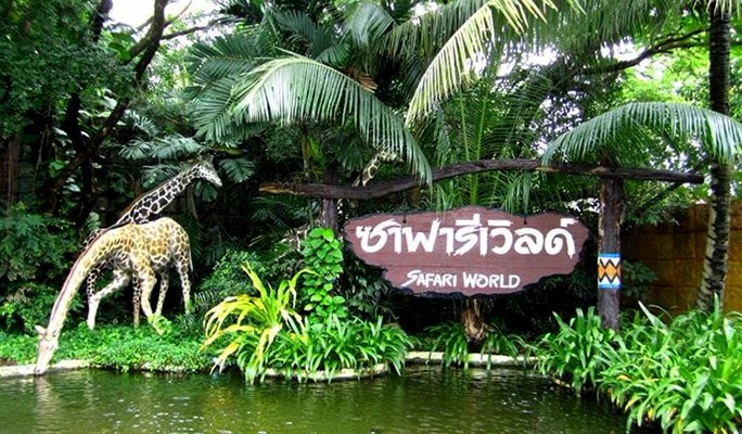 Safari World Bangkok Discount Ticket + Lunch buffet + Transfer
