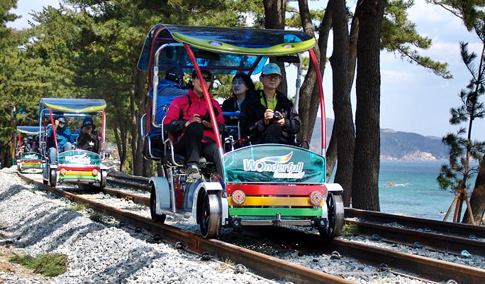 Samcheok Rose Festival + Samcheok Ocean Rail Bike 1 Day Tour (May 27~June 2)