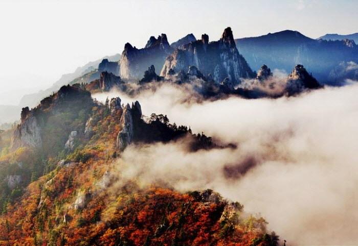 Korea Autumn Foliage 1 Day Tour (Depart from Seoul, Oct 10~Nov 15)