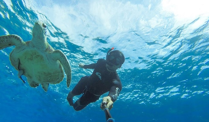 Similan Islands 1 Day Premium Tour by Speedboat (+Breakfast/Lunch/Snorkeling) - from Phuket