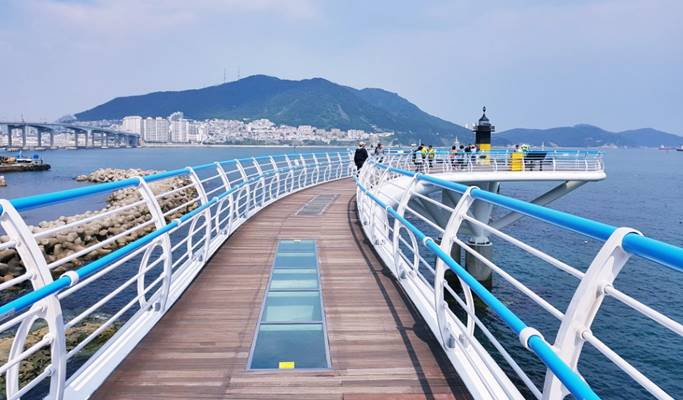 Busan Tour: Gamcheon Culture Village + Songdo Skywalk