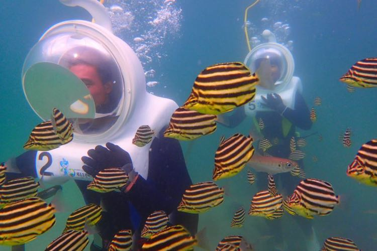 Sea Walking Experience: Discover Underwater World of Jeju